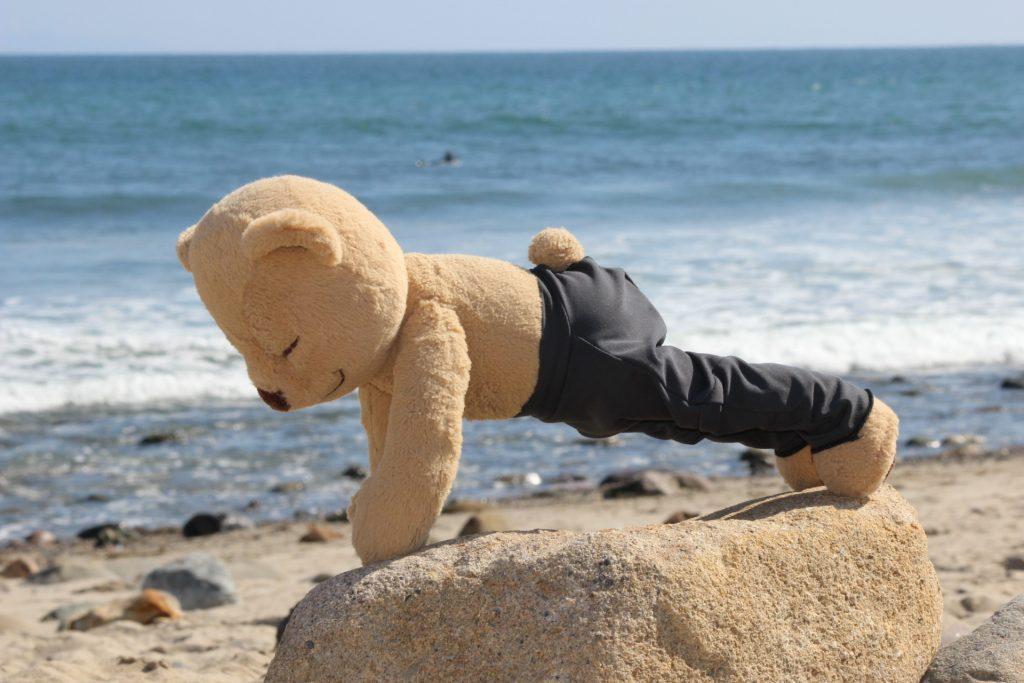 Meddy Teddy plank pose on beach